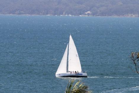 Menace Sailing 001