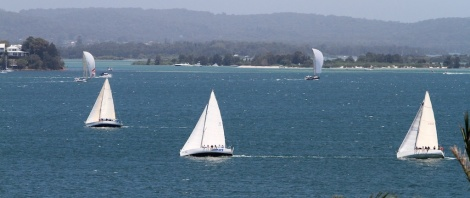 Menace Sailing 002