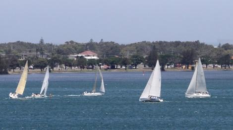 Menace Sailing 003