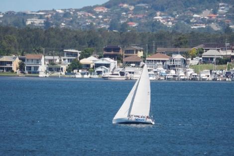 Bay Race